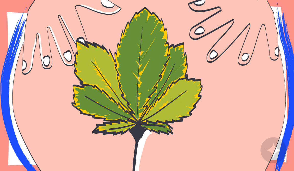 Using a cannabis suppository can alleviate menstrual pain